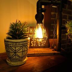 宇都宮/木の家/癒やし/フェイクグリーン/ガス管/エジソンバルブ 一日の疲れを癒してくれる優しい灯り ボー…