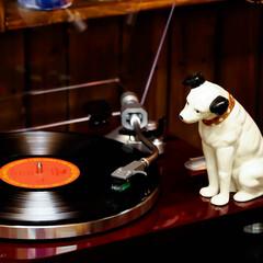 ニッパー/レコード/ビクター/オーディオ ビクタのキャラクター「ニッパー」 蓄音機…
