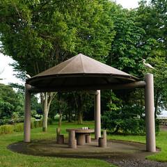 一服/休憩所/公園 こんな休憩所もありました。 コーヒーでも…
