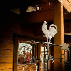 間違え/宇都宮/木の家/風見鶏 こちらの風見鶏には間違えがあります。ちょ…