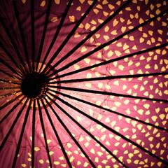 ノスタルジック/和傘/提灯/光りのイベント/那珂川町/栃木県 光りのイベントの続きです。 辺りは暗くな…(5枚目)
