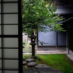 和風住宅/障子/灯籠/苔/日本庭園 障子越しの庭園 和風住宅もいいですね