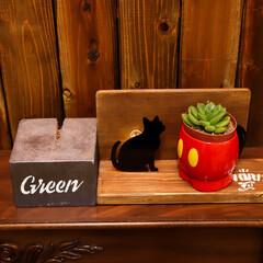多肉植物/木の家/コーヒーカップ このカップは、あの有名なネズミキャラのパ…
