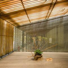 隈研吾/木の格子/広重美術館 木の格子の間から優しい光が差し込みます