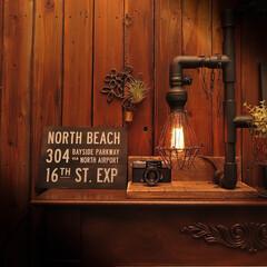 エジソンバルブ/カメラ/PEN-D/エアプランツ/イオナンタ エジソンバルブの優しい灯りとアンティーク…