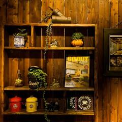 木の家づくり/木の家/DIY/CD/jazz/ダルトン DIYの木の板壁&棚 アイテムの換えて気…
