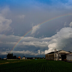 虹/空/ホッと一息 最近忙しくて空を見上げる余裕もありません…