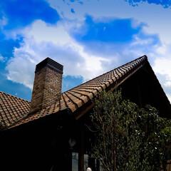 ログハウス/薪ストーブ/木の家 いい天気 春がやってきました