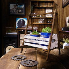 DIY/ブランコ/多肉植物 久々の工作 ネットで見かけた作品を参考に…