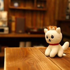 ねこ/ネコ/猫/マスコット うちの会社のマスコット 一応ネコちゃんで…