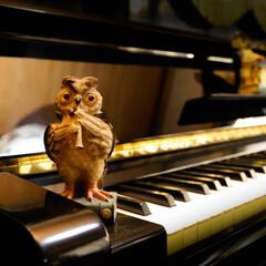 ダイソー/ピアノ ピアノは弾けません 飾りになってます。