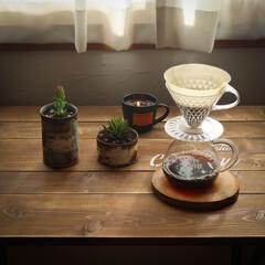 宇都宮市/栃木県/リメ缶/フェイクグリーン/消臭効果/コーヒーかす/... コーヒーかすの活用 消臭効果があるので、…(1枚目)
