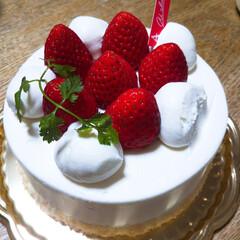 誕生日おめでとう/完食/念願のホールケーキ 娘ちゃん念願のホールケーキ🎂 一番小さな…
