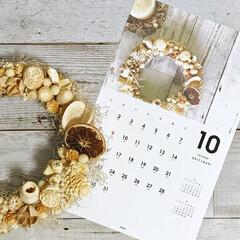 カレンダー/ナチュラル/木の実/アレンジ/ドライ/エクリュカラー/... 手作りリース♪