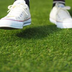人工芝/芝/お庭/エクステリア/ガーデン/メンテナンスフリー 裸足でも靴でも大丈夫。お庭を人工芝にすれ…(1枚目)
