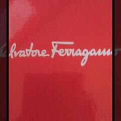 誕プレ/イヤリング/フェラガモ/平成最後の一枚/春のフォト投稿キャンペーン/フォロー大歓迎/... Ferragamoのイヤリングが届きまし…(2枚目)