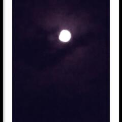 お月様 カテキョの帰り道、 バスを降りるとお月様…