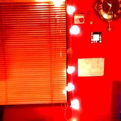ライトアップ/間接照明/フォロー大歓迎/雑貨/インテリア/住まい/... ライトアップ♥♪  LEDライトで♥♪ …