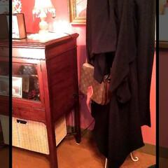 knit/ワンピース/SALE/セレクトショップ/ブランドショップ/おでかけ/... SALEにて。  松本市のLa cien…