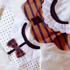 バースデー/スタイ/ファッション バースデーで可愛いスタイを見つけて買いま…