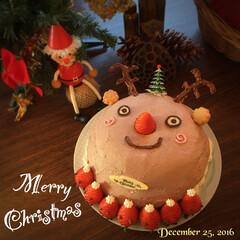 メリークリスマス/トナカイ/クリスマスケーキ/手作りケーキ 今年作った クリスマスケーキは 思わずみ…