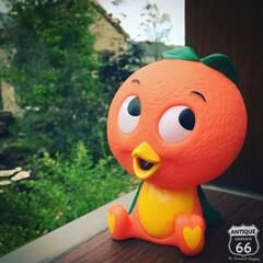 コインバンク/貯金箱/フィギュア/ウォルトディズニー/フロリダオレンジ/オレンジバード/... 🇺🇸ZAKKA✂︎ フロリダの オレンジ…