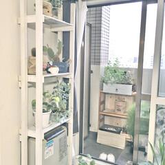 簡単DIY 余った角材でヒーター上に棚を作ってみまし…