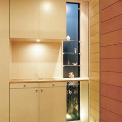 棚/照明/品川 玄関夜景/ガラスブロックの床とガラス棚の…