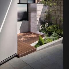 庭/ウッドデッキ/二世帯住宅 杉の木肌を転写したコンクリート塀の内側に…