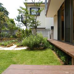 二世帯住宅/縁側/テラス/庭/ガーデニング/山/... 南側の大きな窓は、 10メートルを超える…