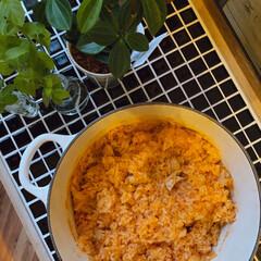チキンライス/ルクルーゼ/モザイクタイル/フォロー大歓迎/キッチン/DIY いつもオムライスの時はチキンライスを炒め…