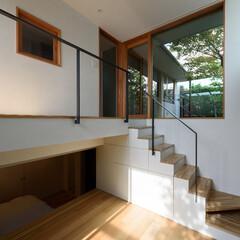 図書室/庭/デッキ/緑/モミジ/半地下 主庭のモミジが見えます。午後になると陽が…