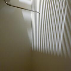室内物干し/ルーバー床 ルーバー床を通して光が入ってきます