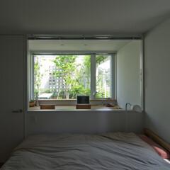 寝室/緑/屋上庭園 個室と同じように、ガラス越しに屋上庭園の…