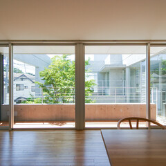 中庭/屋上庭園/緑/ヒメシャラ 中庭の姫沙羅、その奥に屋上庭園が見え、開…
