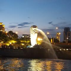 夜景/景色/旅 母と二人でシンガポールに行ってきました。…