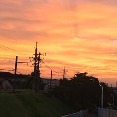 夕焼け 日本では夕焼けは翌日晴れという事ですが、…