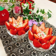 盛るだけいちごケーキ/食べればいちごケーキ/チョコレート/生クリーム/アミカ/スポンジシート/... いちごのお花が咲きました~🍓 ❀.(*´…(2枚目)