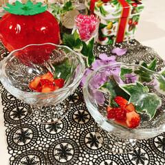 盛るだけいちごケーキ/食べればいちごケーキ/チョコレート/生クリーム/アミカ/スポンジシート/... いちごのお花が咲きました~🍓 ❀.(*´…(7枚目)