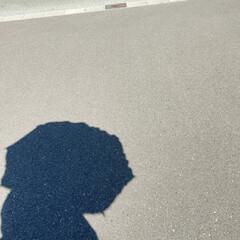 ありがとう/ハーバリウム/日傘/母の日/母の日のプレゼント/遮光/... 母の日のプレゼント🎁娘から  日傘と手作…(4枚目)