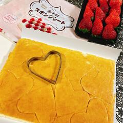 盛るだけいちごケーキ/食べればいちごケーキ/チョコレート/生クリーム/アミカ/スポンジシート/... いちごのお花が咲きました~🍓 ❀.(*´…(8枚目)