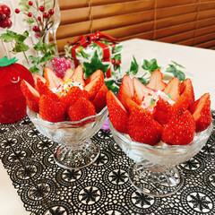 盛るだけいちごケーキ/食べればいちごケーキ/チョコレート/生クリーム/アミカ/スポンジシート/... いちごのお花が咲きました~🍓 ❀.(*´…(1枚目)