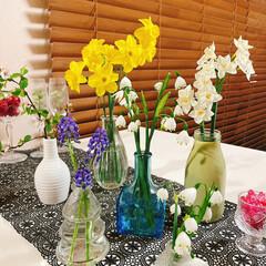ライフスタイル/暮らし/暮らしを楽しむ/おうち時間/癒し時間/お花/... お花と花瓶  実家の庭に咲いてるお花❀ …(1枚目)
