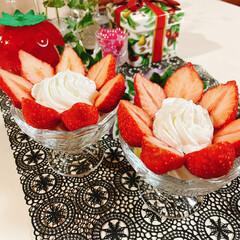 盛るだけいちごケーキ/食べればいちごケーキ/チョコレート/生クリーム/アミカ/スポンジシート/... いちごのお花が咲きました~🍓 ❀.(*´…(4枚目)