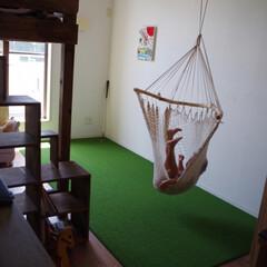 プレイルーム/パターゴルフ/DIY/暮らし/住まい/リフォーム/... 二階の真ん中の部屋は子供のプレイルーム。…