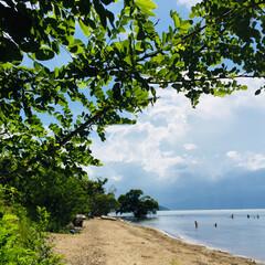 琵琶湖/貝がら/ハンドメイド/おでかけ 今週末も琵琶湖へドライブ。子どもの友達、…