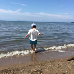シーグラス/貝/流木/ハンドメイド 琵琶湖へ。流木、貝やシーグラス、砂を拾っ…