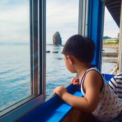 夏の思い出 青森はやっぱり海産物が美味しい😋  いく…(5枚目)