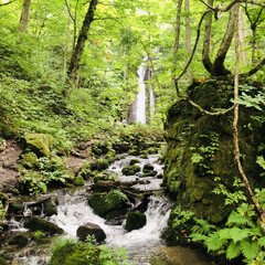 日記/青森/十和田湖/奥入瀬渓流/旅行先 こないだ行った奥入瀬渓流。パート1。  …