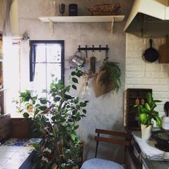 セリア/リノベーション/キッチン/IKEA/ニトリ お気に入りのキッチンです♪♪